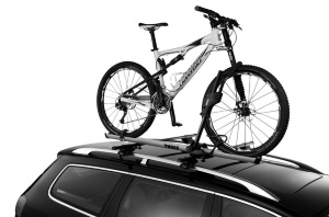 Thule Sidewinder Roof top 1 bike carrier